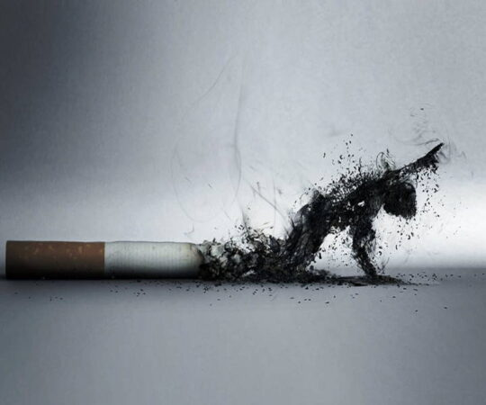 Advantages of Buying Cigarettes Online